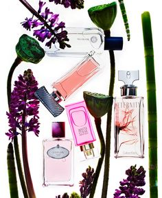 Suzy Johnston + Associates | Natasha V. #editorial #perfume #fragrance