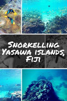 Snorkelling in the Yasawa Islands, Fiji