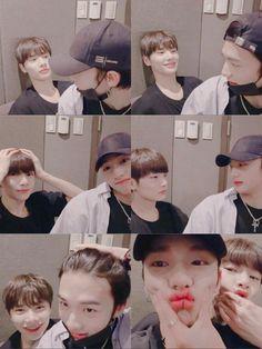 After Marriage [HyunJeong]✔ Nct, Cute Cows, Fandom, Felix Stray Kids, Kid Memes, Crazy Kids, Kids Wallpaper, Kpop Boy, K Idols