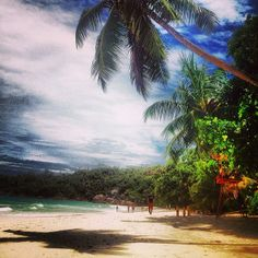 One of the World's best beaches- Anse Lazio, Prasin Island, Seychelles Top Pic, Number 7, Camps, Seychelles, Wander, South Africa, Trip Advisor, Beaches, Lust