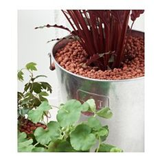 IKEA - ODLA, Growing media, The clay pellets help create an ideal soil environment for your potted plants.The clay pellets can also be used to fill any remaining space in a plant pot containing a smaller plant, real or artificial.