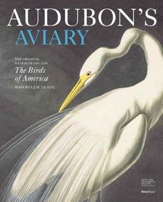 Audubon's Aviary Limited Edition: The Original Watercolors for The Birds of America by Roberta Olson, http://www.amazon.com/dp/0847839435/ref=cm_sw_r_pi_dp_JMdLqb1ACKE94