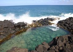 Queen's Bath, Kauai.  I swam with sea turtles here and the best part was queen's bath was only a short easy hike from the house I stayed in.