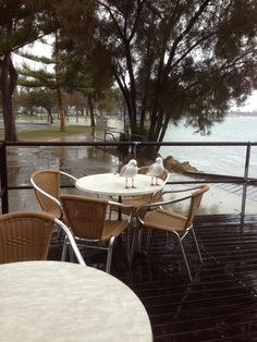 Dome Cafe Mandurah.,,, even in the rain it's special