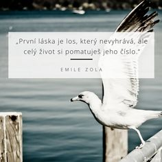 citáty o životě obrazky - Hledat Googlem Places To Visit, Thoughts, Quotes, Beautiful, Quotations, Quote, Shut Up Quotes, Ideas