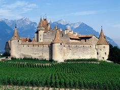 Google Image Result for http://1.bp.blogspot.com/-dxKaB_AEjEo/TwWwWkS_7vI/AAAAAAAAMa0/bSxoUP6Ggbw/s1600/Chateau-dAigle-Switzerland.jpg