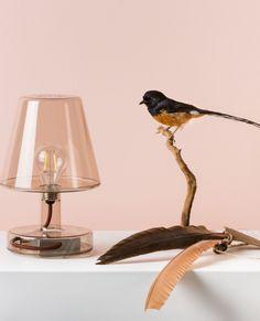 Lampa stołowa przezroczysta Transloetje marki Fatboy Table Lamp, Usb, Lighting, Design, Home Decor, Table Lamps, Decoration Home, Room Decor, Lights