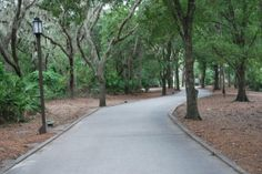 Fort Wilderness Campground trail, scenic, Engagement spot