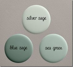 Ben Moore silver sage~I love the silver sage shade need to remember this