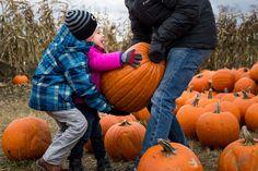 W ostatni weekend października wybrałam się z moimi dziećmi na Farmę Dyniową w Powsinie. Przeczuwałam, że będzie to dla nich wielka atrakcja i nie pomyliłam się :) Gdy Jasiu zobaczył kurę, podekscy…