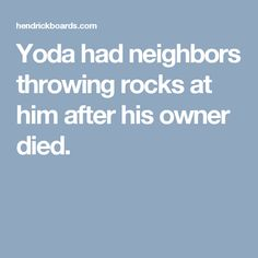Yoda had neighbors throwing rocks at him after his owner died.