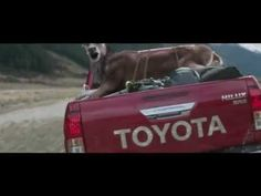 WTF Toyota? >Animals Love Being Killed, Says Car Company In Twisted New Ad