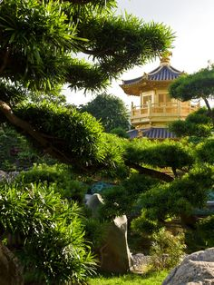 Chi Lin Nunnery & Nan Lian Garden - beautiful gardens within the city.