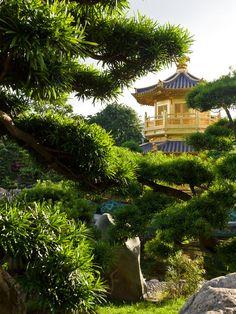 Chi Lin Nunnery & Nan Lian Garden - beautiful gardens within the city.