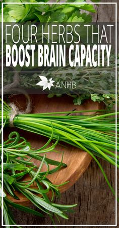 Four Herbs That Boost Brain Capacity << Its annoying when a link swamps you with ads and requires you to click again to get to the information. Eventually you learn that the 4 Herbs are: Gingko Biloba, Bacopa, Reishi and Shilajit.