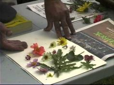 Pressing Plants - A Simple Way to Dry Flowers - YouTube -- I love to do this! I open books all the time, and dried flowers fall out ;0