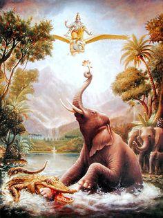 """Gajendra Moksha"" a prayer, addressed to Lord Vishnu by Gajendra, the King Elephant, is one of the most magnificent hymns of bhakti from the Bhagavat Lord Krishna Images, Radha Krishna Pictures, Arte Krishna, Krishna Statue, Krishna Leela, Rambo 3, Lord Vishnu Wallpapers, Krishna Painting, Hindu Deities"