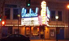 Black Angels @ the Bluebird Theater (Colfax Ave - Denver, Colorado)