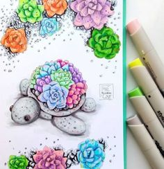 33 Ideas Cute Succulent Drawing Inspiration For 2019 Copic Marker Art, Copic Art, Sketch Markers, Colorful Drawings, Easy Drawings, Marker Drawings, Copic Drawings, Pokemon, Succulents Drawing