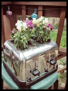 toaster plant pot