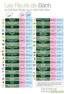 Pin by Philippe Jaccoud on Fleurs De Bach Health And Wellness, Health Tips, Health Fitness, Wellness Tips, Health Benefits, Homemade Body Care, Bach Flowers, Sleep Apnea Remedies, Healthy Detox