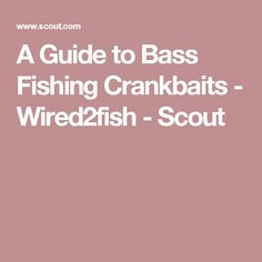 A Guide to Bass Fishing Crankbaits - Wired2fish - Scout