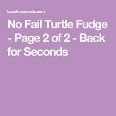 No Fail Turtle Fudge - Page 2 of 2 - Back for Seconds