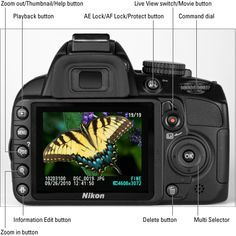 Nikon D3100 Cheatsheet for Dummies