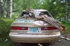 If a tree falls (on a car) in the woods does it make a sound? Funny License Plates, Vanity License Plates, Licence Plates, Vanity Plate, Bumper Stickers, Hood Ornaments, Woods, Cars, Signs