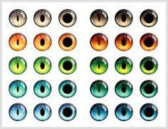 Картинки по запросу eye iris vector