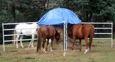 How to use slow feed hay nets for horses - Natural Horse World Horse Hay, Horse Paddock, Horse Stables, Horse Barns, Horse Slow Feeder, Hay Feeder For Horses, Round Bale Feeder, Horse Shelter, Horse Fencing