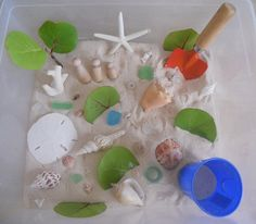 Beach--:: Sand from our favorite beach, shells, three wooden peg people, sea glass and bits of coral, leaves (fallen) from one of the trees that lines the pathway to the beach, shovel and pail