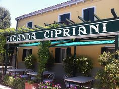 Next time you are in Venice? Head to Torcello to eat at the Locanda Cipriani.