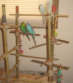 Indoor furniture and how to build on pinterest for How to build a bird stand