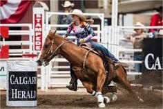 calgary stampede with Financial and McCurrach Top Travel Destinations, Best Places To Travel, Budget Travel, O Canada, Canada Travel, Great Western, Western Wear, City Scene, Ranch Life