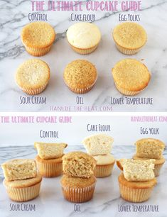 Make the cupcake of your dreams! The Ultimate Cupcake Guide: what makes cupcakes light greasy fluffy dense crumbly or moist! No Bake Desserts, Just Desserts, Delicious Desserts, Dessert Recipes, Yummy Food, Health Desserts, Yummy Treats, Sweet Treats, Let Them Eat Cake
