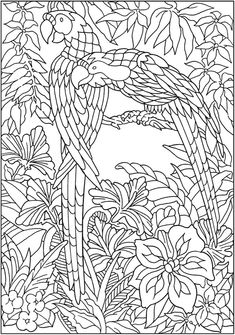 Jungle animal art for kids coloring sheets Trendy ideas Jungle Coloring Pages, Mandala Coloring Pages, Animal Coloring Pages, Coloring Pages To Print, Coloring Book Pages, Printable Coloring Pages, Coloring For Kids, Coloring Sheets, Bird Drawings