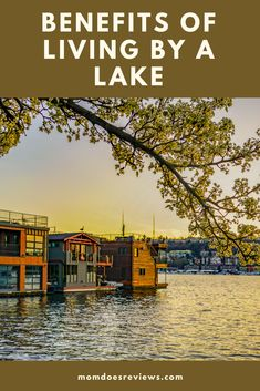 Benefits of living by a lake Natural Fence, Lakeside Living, Noise Pollution, Summer Parties, Best Location, Far Away, Outdoor Activities, Home Buying, Home And Living