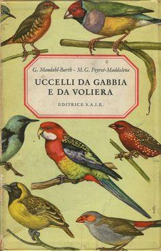 Uccelli Da Gabbia E Da Voliera