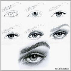 Learn how to draw an eye every step to learn, try yourself