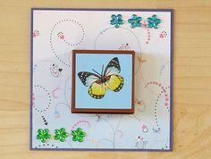 Schokoladen-Karte mit Ritter-Sport-Schachtel, Geburtstag, Schmetterling