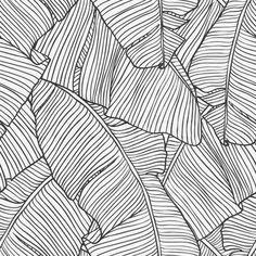 Vector illustration leaves of palm tree. Vector illustration leaves of palm tree. Textures Patterns, Print Patterns, Organic Patterns, Pattern Art, Pattern Design, Vector Pattern, Motif Floral, Art Graphique, Wall Wallpaper
