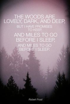 The woods are lovely, dark, and deep... but I have promises to keep...