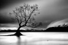 What a gorgeous B&W landscape photo! This is simply stunning with perfect lighting! See it and you be the judge: http://bit.ly/qM98Ed