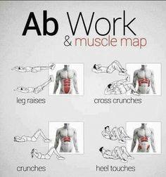 Mapa Muscular y Ejercicios para Abdomen