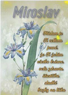 meninové priania Flower Aesthetic, Toddler Girl, Happy Birthday, Tableware, Flowers, Humor, Facebook, Happy Brithday, Dinnerware