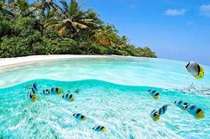 Clear water beaches - in Chinese