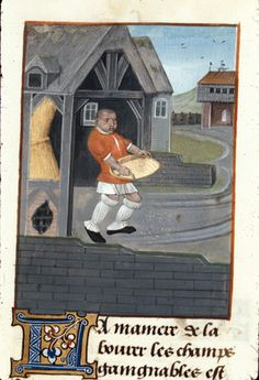 Sheds in illuminated medieval manuscripts