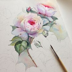 Hi. I'm Margaret, tumblr junkie, art & photography lover, admirer of good coffee, two boxers dog... Painting Lessons, Painting Techniques, Watercolor Techniques, Watercolor Rose, Watercolor Cards, Watercolor Artists, Watercolor Illustration, Watercolour Painting, Watercolor Tattoo