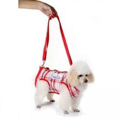 Mochila P Transporte De Cães Em Motos Transport Cachorros N3 - R$ 69,90 no MercadoLivre